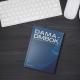 'Brevity is the soul of wit': DAMA-DMBOK in a nutshell